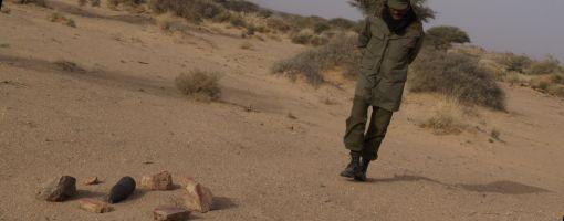 landmine_510
